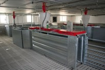 Automatic feeding boxes COMPIDENT